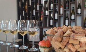 Vinul cramei Aramic, elementul fantastic al Silagiului