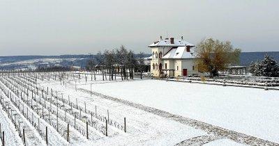 Vinurile săptămânii: Luna Decembrie - parada soiurilor Românești continuă