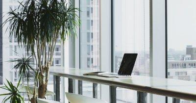 Coronavirus | Genesis Property: cum ne pot atrage angajatorii înapoi în birou