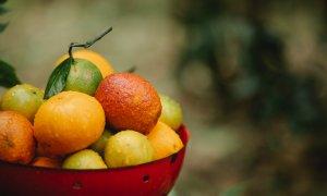 2020 a adus creșteri de 15% pe segmentul de produse bio