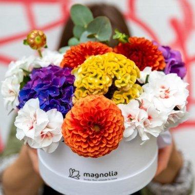 Cea mai mare florărie din România, cifră de afaceri în creștere în 2020