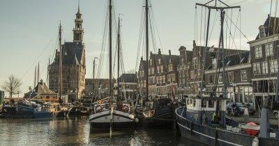 Burse pentru tineri în Olanda pe finanțe, economie, antreprenoriat