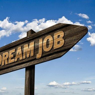 Joburi remote: În ce domenii se caută angajați pentru munca de la distanță