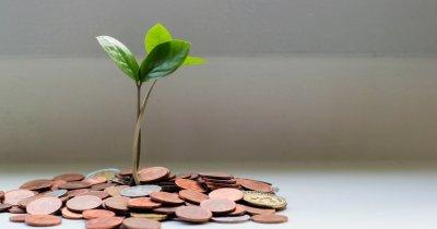 Fondurile de venture capital: investiții în creștere în ciuda crizei Covid-19