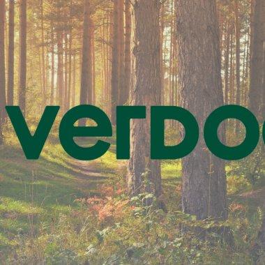 Cum faci shopping online și plantezi copaci? Românii de la Verdoo te ajută
