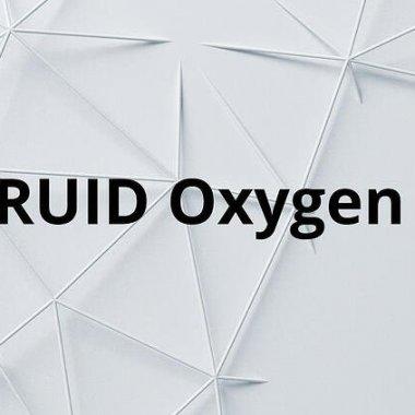 DRUID lansează Oxygen, software de automatizare prin conversație a proceselor