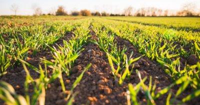 Tineri Lideri pentru Agricultură pregătește succesiunea afacerilor de familie