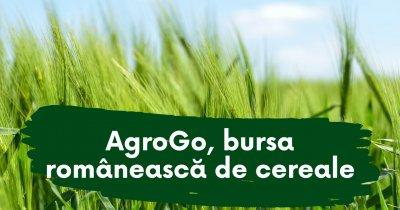 AgroGo, românii care le spun fermierilor prețul corect pentru produsele lor