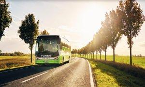 FlixBus leagă 11 orașe din Moldova de aeroportul Otopeni. Parteneriat cu Transfero