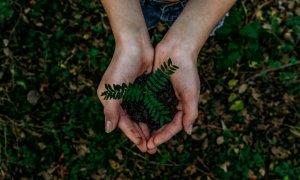 Strategia de sustenabilitate & importanța raportării ESG: companiile din România