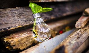 50.000 de euro pentru idei de business care promovează reciclarea