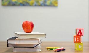Investiție într-un business din domeniul educației: Success Academy