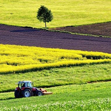 Aplicația care conectează fermierii şi comercianții de cereale cu transportatorii